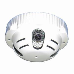 Seqcam Hidden Colour Security Camera