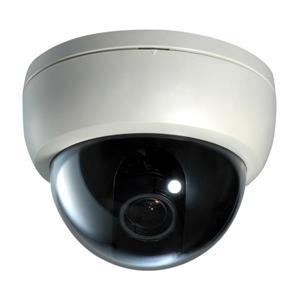 Seqcam Plastic Dome Colour Security Camera