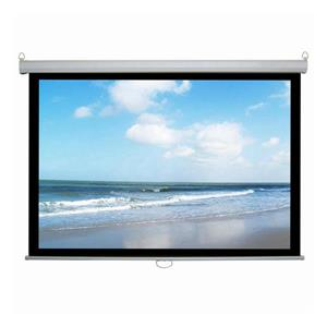 TygerClaw 100-in White Manual Projector Screen