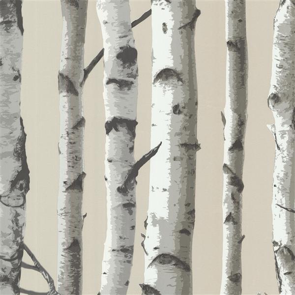 Papier peint arbre bouleau Irvin, gris