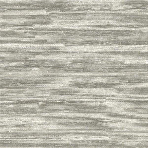 Papier peint Aspero, gris