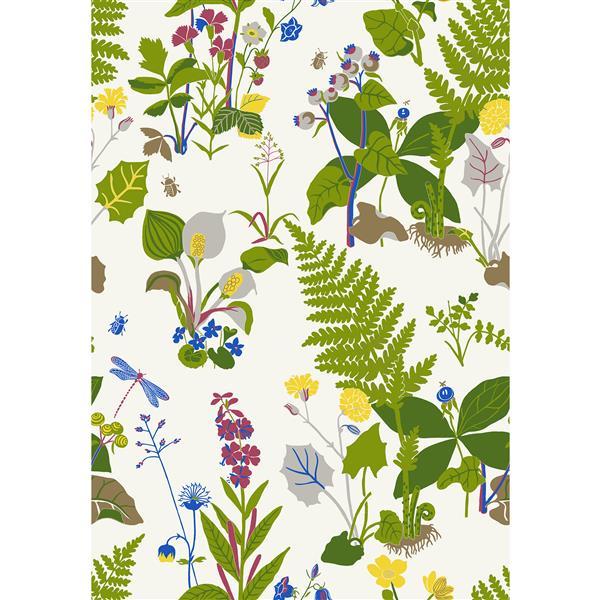 Papier peint botanique Trollslända, vert