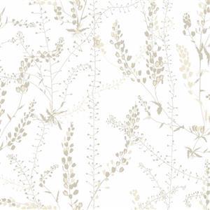 Brewster Wallcovering Bladranker Beige Botanical Paste The Wall Wallpaper