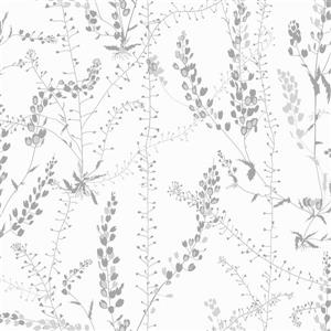 Brewster Wallcovering Bladranker Gray Paste The Wall Botanical Wallpaper