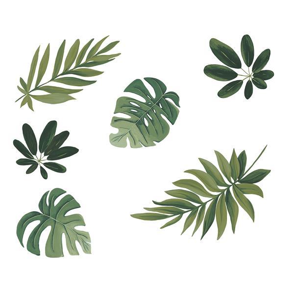 Trousse d'art mural de feuilles de havane, WallPops