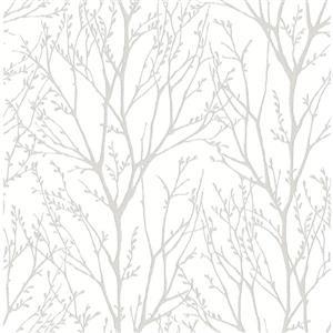 Papier peint cime d'arbre
