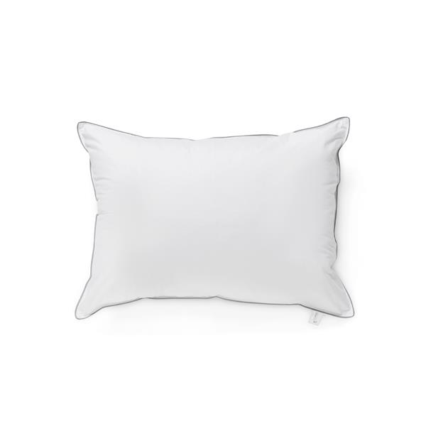 Millano Cotton 20-in x 30-in Pillows (Set of 2)