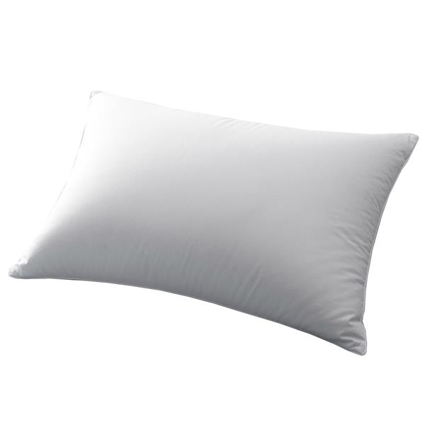 Millano Polyester Blend 20-in x 34-in Pillows (Set of 2)