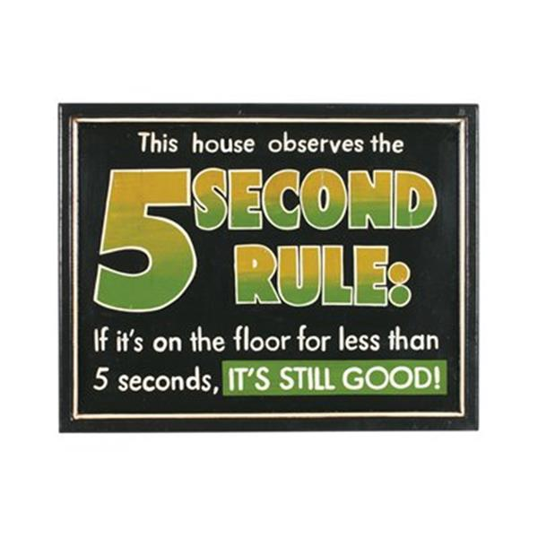 RAM Game Room 17-in x 21-in 5 Second Rule Outdoor Sign