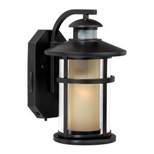 Cascadia Cadiz Smart Light 8-in Motion Sensor Dusk to Dawn Outdoor Wall Light