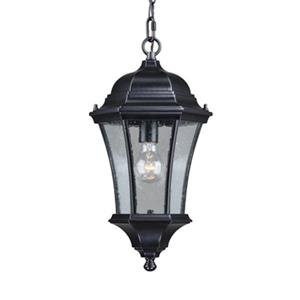 Cascadia Aberdeen Aluminum 1-Light Black Outdoor Pendant Light
