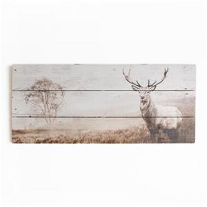 Graham & Brown 15.70-in x 27.60-in Brown Stag Print On