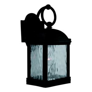 Sea Gull Lighting Branford 14-in H Obsidian Mist Outdoor Wall Light.
