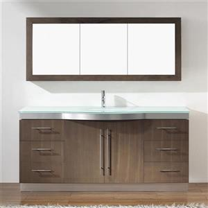 Spa Bathe Delucia Smoked ash Single Sink Vanity with Mint green Glass Top (Common: 72-in x 22-in)