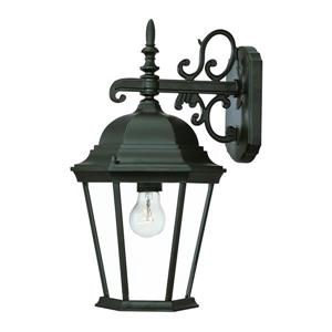 Acclaim Lighting Richmond Outdoor Wall-Mount Light- 1-Light