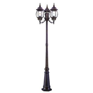 Acclaim Lighting Brown Chateau Outdoor Lantern and Post