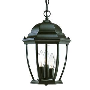 Acclaim Lighting Wexford 14.75-In x 9.50-In Matte Black 3 Light Outdoor Hanging Lantern