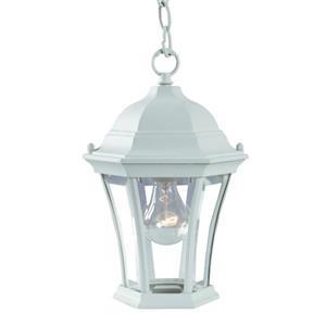 Lanterne suspendue extérieure à 1 ampoule Bryn Mawr