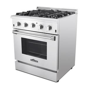 Thor Kitchen 30-in 4.2 cubic ft 4-Element Professional Gas Range with Convection Oven (Stainless Steel)