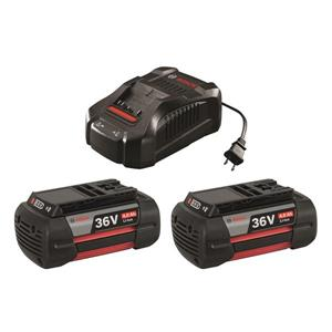 Bosch Lithium-Ion Battery and Charger Starter Kit - 36 V