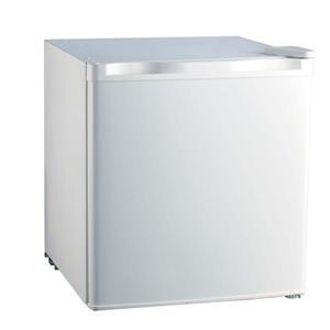 Compact Refrigerator - 18.3