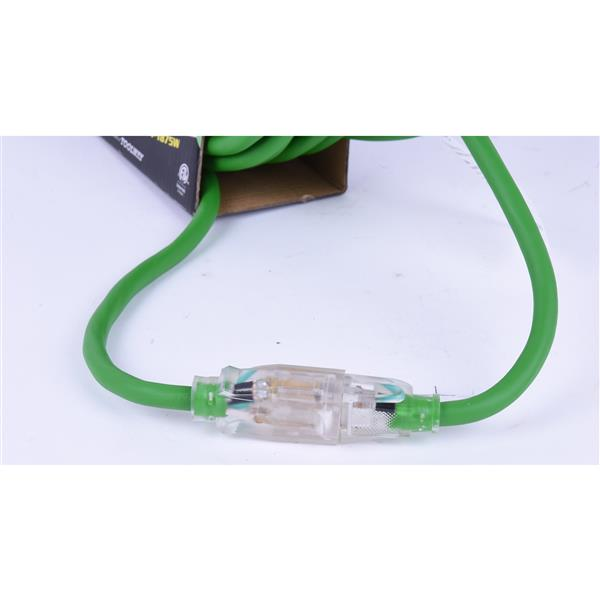 Rallonge Électrique, 10 m, 1 prise, 125 volts, vert