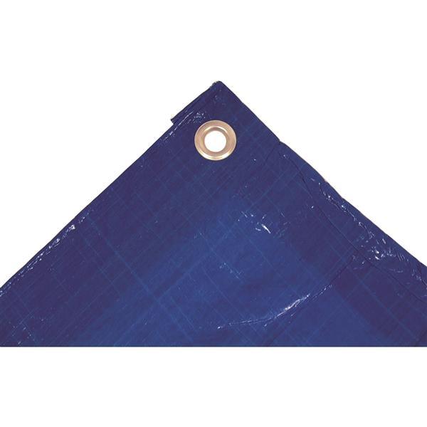 Bâche, 20' x 30', polyéthylène, bleu