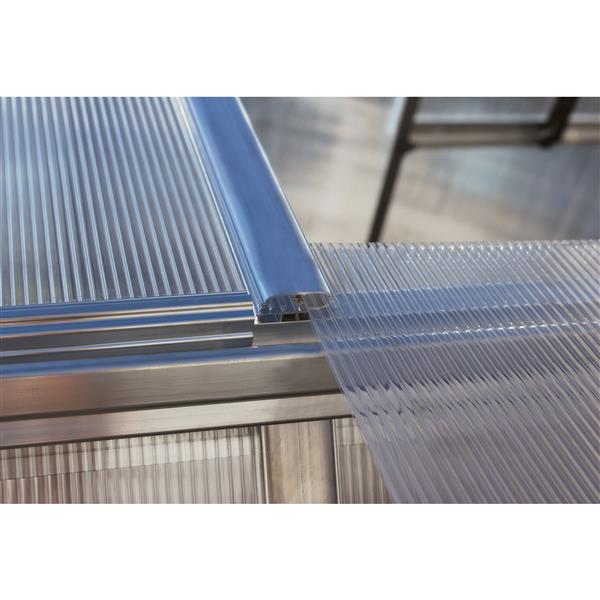 Greenhouse - Essence - 8 ' x 12 ' - Silver