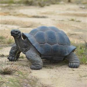 Hi-Line Gift Large Tortoise Statue,87761-L