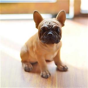 Hi-Line Gift Sitting French Bulldog Puppy,87771-M