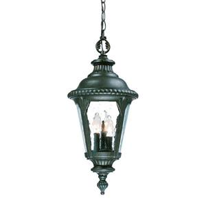 "Acclaim Lighting Surrey Outdoor Lantern - 21.75"" - 3 Lights - Black"