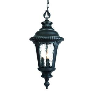 "Acclaim Lighting Surrey Lantern - 21.75"" - 3 Lights - Black"