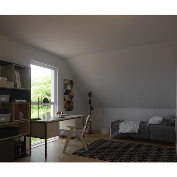 VELUX 30.06-in x 54.43-in Fixed DeckMount Skylight w/Lam LoE3 Glass