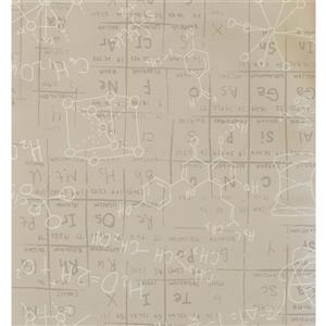 York Wallcoverings Kids Wallpaper for Boys and Girls - Grey