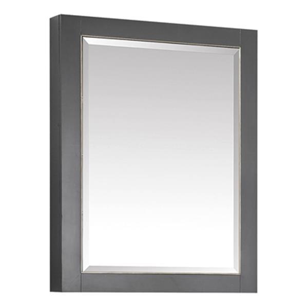 Avanity 22-in Allie/Austen Mirror Cabinet,170512-MC22-TGG