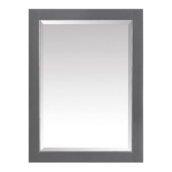 Avanity 22-in Allie/Austen Mirror Cabinet,170512-MC22-TGS