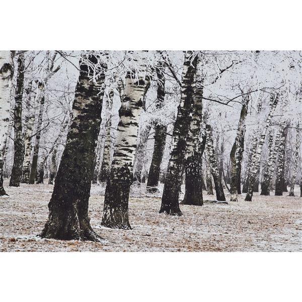 """Ornement mural Woodland, 32"""" x 63"""", imprimé, gris"""