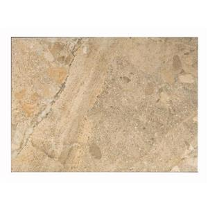 Ceramic Tile 13