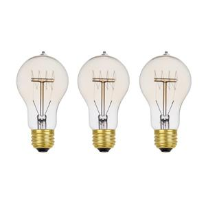 Edison Incandescent Light Bulb - 60 W - Pack of 3