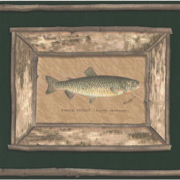 "Retro Art Wallpaper Border - 15' x 9"" - Trout Pictures - Moss Green"