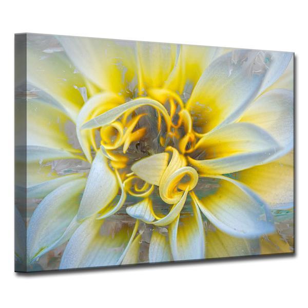 """Décoration murale sur toile, pétales, 40"""" x 30"""", jaune"""