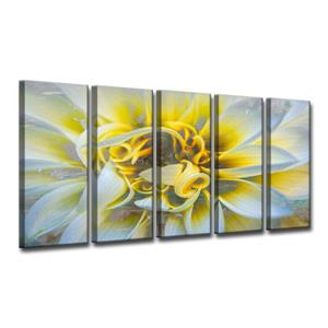Painted Petals Canvas Wall Décor - 60