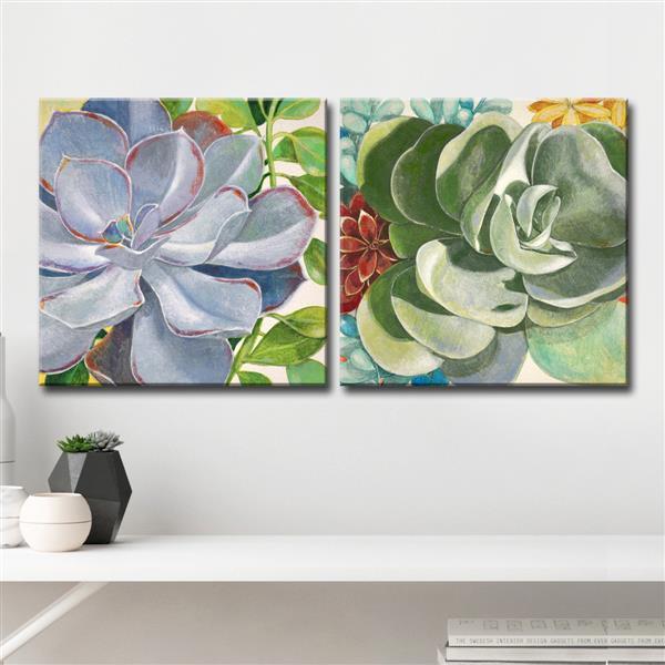 """Ens. d'art mural, succulentes brillantes, 60"""", 2 mcx"""