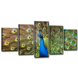 Peacock Canvas Wall Décor Set - 60