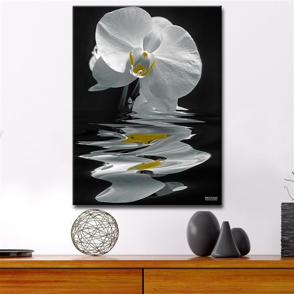 """White Orchid Canvas Wall Décor - 30"""" - White"""