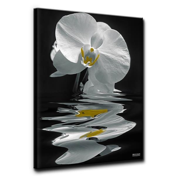 """Décoration murale, orchidée blanche, 30"""", blanc"""