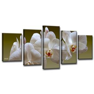 White Orchid Canvas Wall Décor Set - 60