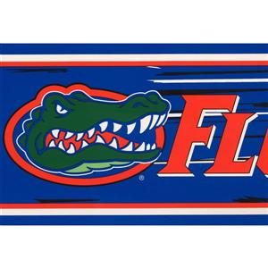 Retro Art Florida Gators Wallpaper Border