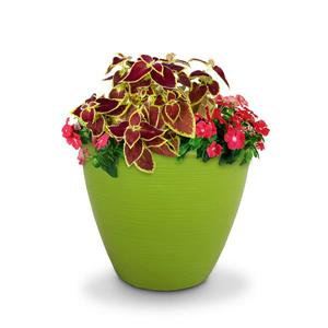 Mayne Modesto Tall Planter - 20-in x 20-in - Plastic - Green
