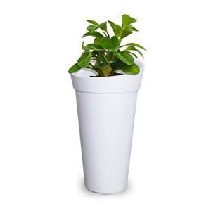Jardinière haute Creston, 16 po x 28 po, plastique, blanc